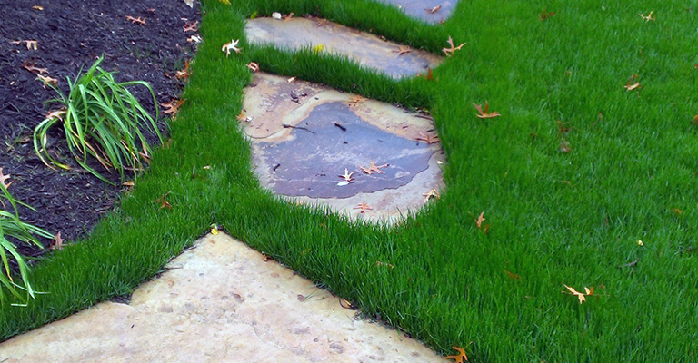 Lawn Care Kansas City Residential Grass Job
