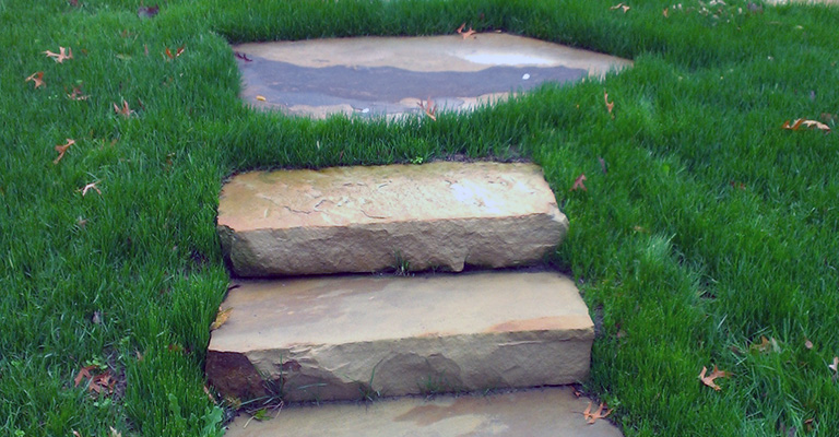 Lawn Care Kansas City Residential Grass Steps